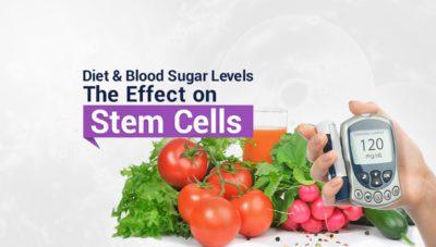 Effect on Stem Cells