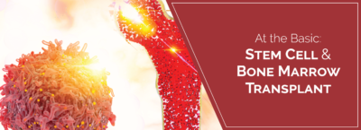 stem-cells & bone marrow transplant